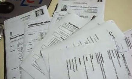 exemplos de curriculum