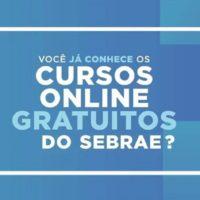 sebrae cursos online