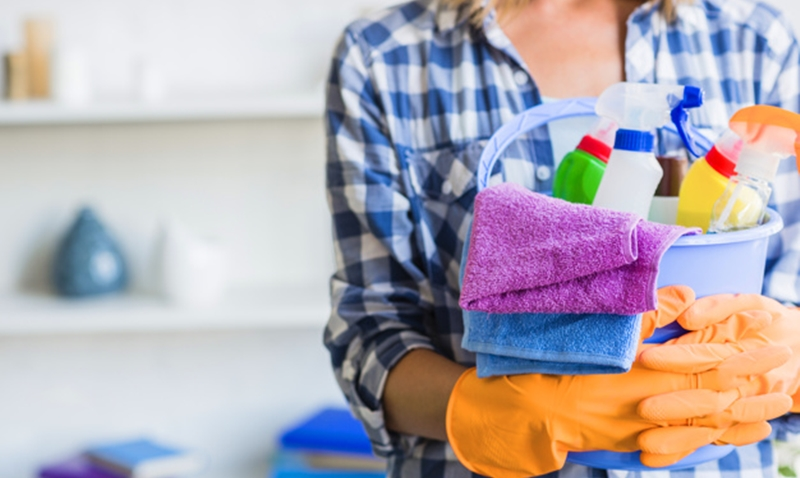 Exemplo de currículo para empregada domestica sem experiência