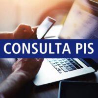 Consulta PIS Online e Por Telefone